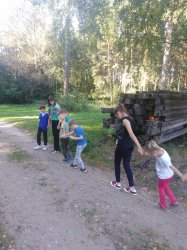 Прогулка в сказочном лесу